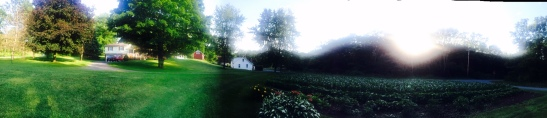 A pretty awesome pano of Pap and Gram's house and garden in Royer.